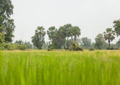 cambodia-hike-15