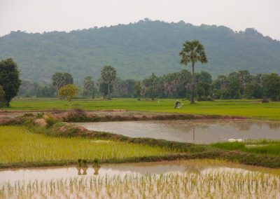 Cambodia Hike